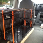Finished Installation of Dog Crate