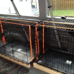 Side by side Dog Crates