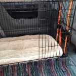 Dog Crate Installation